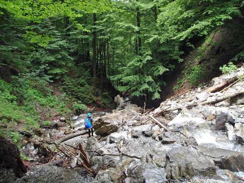 weissenbach_20080718_04.jpg