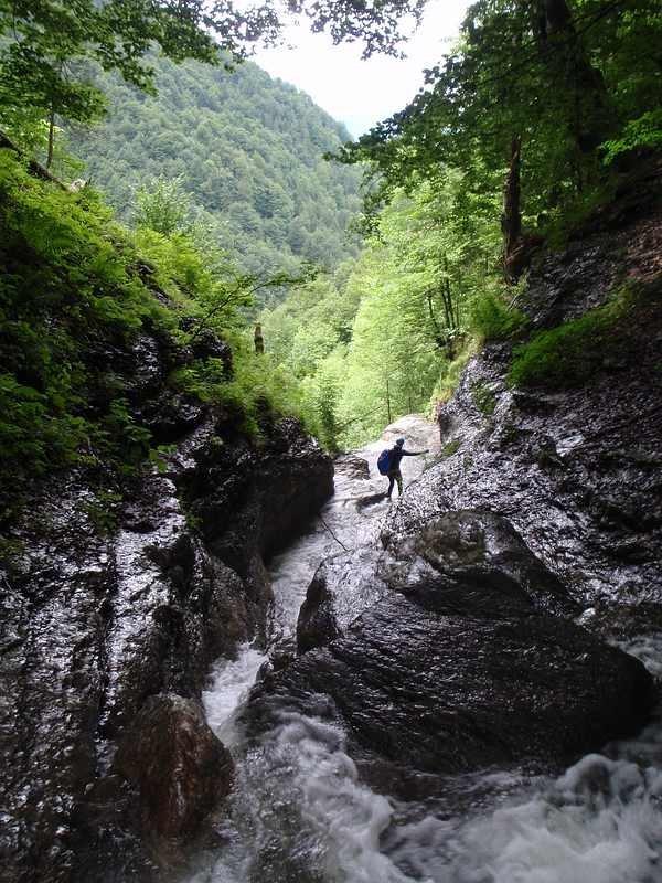 weissenbach_20080718_06.jpg