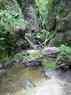 bief_a_la_dame_07.jpg