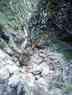 20020714_Seiergraben_(20).jpg